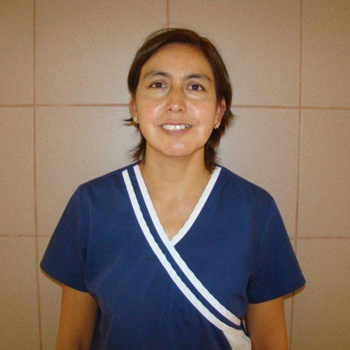 E.U Rosana Moreno Araos